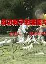郭中平_成功教子的策略和方法