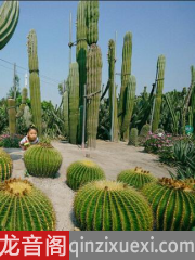 植物生存进化